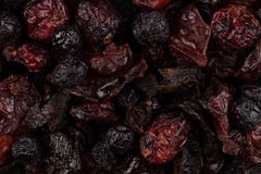 Dried cranberries, cherries and blueberries Stock Images
