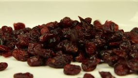 Dried cranberries fray on a white dish. Close-up stock video footage