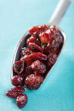 Dried cranberries in a scoop Stock Photos