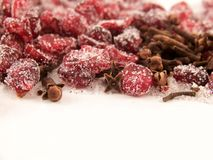Dried Cranberries and Sugar and Cloves. Image of dried cranberries mixed with cloves and white granulated sugar Stock Photography