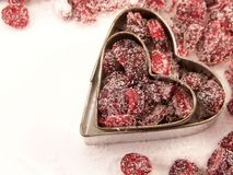 Dried Cranberries and White Sugar Stock Photography