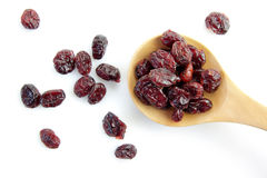 Dried cranberries Royalty Free Stock Photos