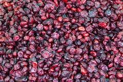 Dried cranberry background. Sineu market, Majorc stock images
