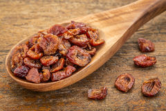 Dried cranberry Stock Photography