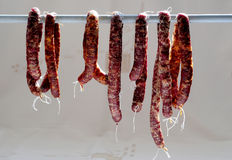 Dried cured salami,. Drying is a hand-crafted dried cured salami stock image