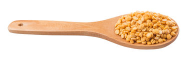 Dried Dal Lentil On Wooden Spoon I. Dried pulse dal lentil on a wooden spoon over white background royalty free stock photography