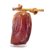 Dried date Stock Photos