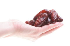Dried date fruits in palm isolated Royalty Free Stock Photos