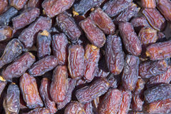 Dried date palm fruit. Closeup of dried date palm fruit stock images