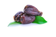 Dried date palm fruit Royalty Free Stock Photo