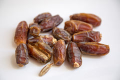 Dried date palm Royalty Free Stock Image