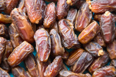 Dried date palm Stock Photo