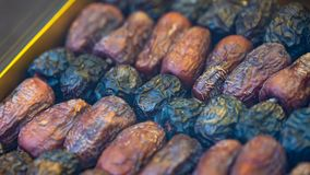 Dried Date Palm Sweet Fruit stock images