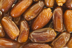 Dried Dates. Dried sweet dates close up, food background Stock Image