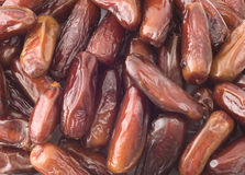 Dried dates. Close-up of dried dates Stock Photography