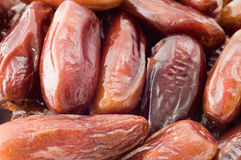 Dried dates. Close-up of dried dates Stock Photos