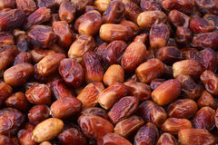Dried dates. Background of piled tasty whole dried dates Stock Images