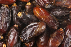 Dried dates close-up Stock Images