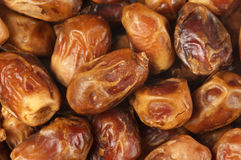 Dried dates close-up Stock Photography