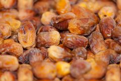 Dried dates Fruit. fresh dates fruits background royalty free stock images
