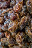 Dried dates Fruit Stock Photography