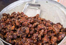 Dried dates at a market. Dried dates at a fresh market in Muscat, Oman Royalty Free Stock Photos