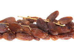 Dried dates (Phoenix dactylifera l) isolated on white background Royalty Free Stock Photography