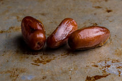 Dried dates on steel plate Royalty Free Stock Photo