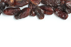 Dried Dates. Tamara Frame. Isolated in white background Stock Image
