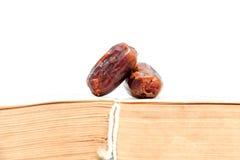 Dried dates (fruits of date palm Phoenix dactylifera). Stock Image