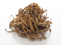 Dried daylily Stock Images