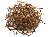 Dried daylily Stock Photography