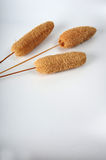 Dried Decor Sponges. Three dried decor sponges on sticks on white surface.  Copy space in lower part of vertical image Stock Images