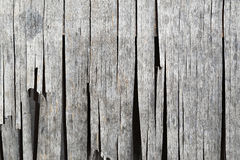 Dried desiccated wooden cladding Royalty Free Stock Photos