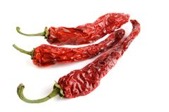 Dried dhili peppers Royalty Free Stock Photo