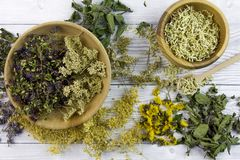 Dried different herbs on wooden background, macro image. Dry different herbs in bowls on wooden background - herbs mix stock photos