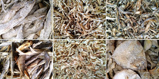 Dried different salted cod fish Royalty Free Stock Photo