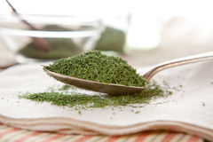 Dried dill Royalty Free Stock Images