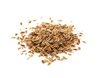 Dried dill seeds isolated. Royalty Free Stock Photo