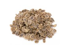 Dried dill seeds Royalty Free Stock Photos