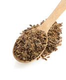 Dried dill seeds in spoon Royalty Free Stock Images