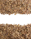 Dried dill seeds on white Stock Photo