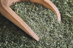 Dried dill weed Stock Photos