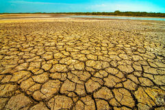 Dried Dirt. Dried out dirt baking in the desert sun Royalty Free Stock Photo