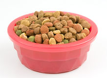 Dried dog food in a pink bowl Stock Photography
