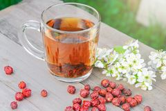 Dried dog rose, rosehips, apples and tea Stock Image