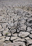 Dried Earth. Of a piece of drought land stock image