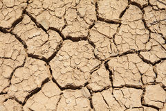 Dried earth Royalty Free Stock Photography