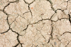 Dried earth Stock Photography