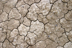 Dried earth Stock Photo